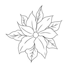 Christmas Flower Poinsettia. Coloring Book For Children. Vector Illustration Isolated On White Background.