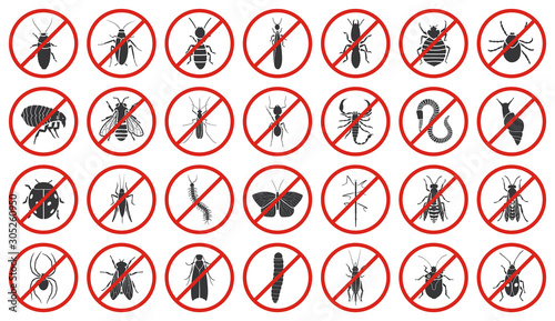 Slika na platnu Bug of insect vector black set icon