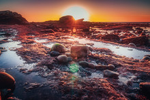 Bird Rock Tide Pools At Low Tide Shot During Sunset In La Jolla, San Diego, USA.