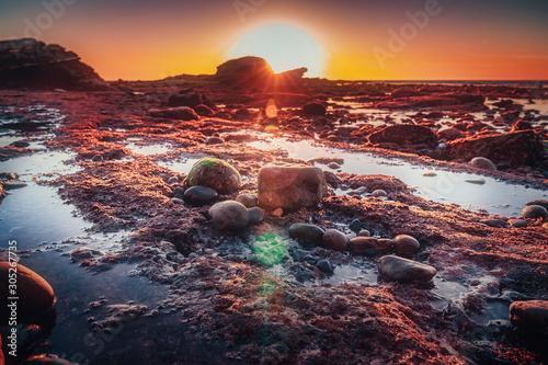 Foto auf Leinwand Kastanienbraun Bird Rock tide pools at low tide shot during sunset in La Jolla, San Diego, USA.