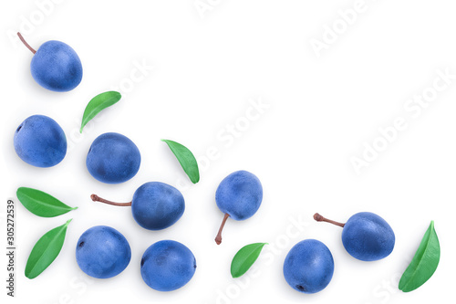 Fényképezés Blackthorn or Sloe berries with leaves isolated on white background with copy space for your text