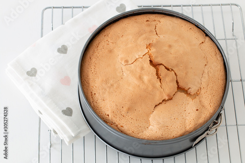 Fotomural Baked sponge cake in a round form