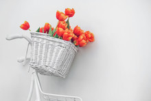 White Bicycle With Red Tulips Floral Basket Isolated On White Background. Retro Old-fashioned Style.