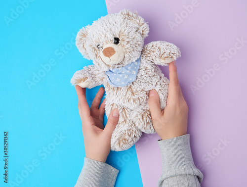 two female hands hold a small toy teddy bear on a blue background