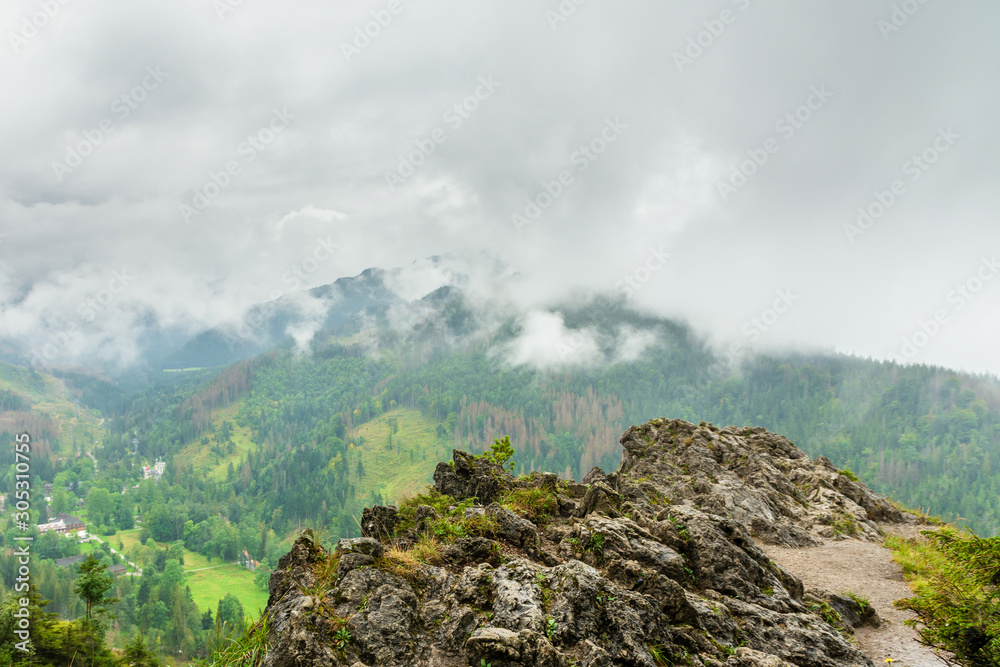 Rocky mountain in Polish Tatra mountains. Beautiful green forests. Everything is covered with clouds and fog