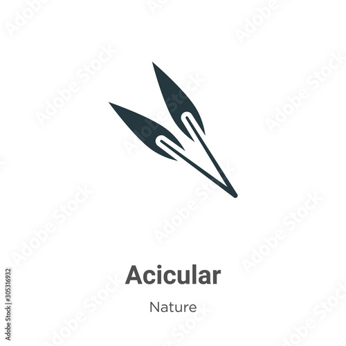 Acicular vector icon on white background Canvas Print