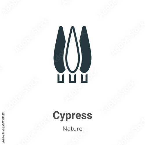 Cypress vector icon on white background Fototapet