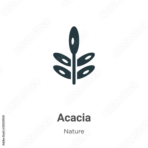 Photo Acacia vector icon on white background
