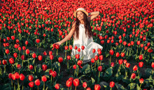 Happy Female Amidst Red Flowers