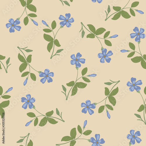 Fototapeta Seamless floral pattern with branches of periwinkle flower