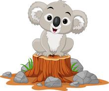 Cartoon Baby Koala Sitting On ...