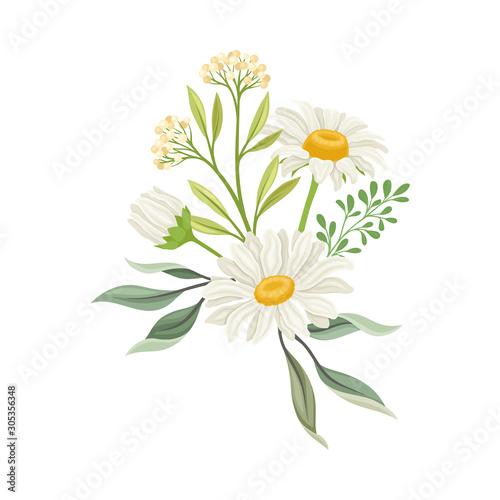 Fotografía Bouquet of Daisy Flowers Vector Composition