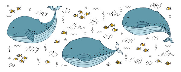 Fototapeta Morze Drawing - funny whale and hand drawn elements