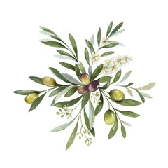 Fototapeta Przyprawy Watercolor vector bouquet of olive branches and flowers.