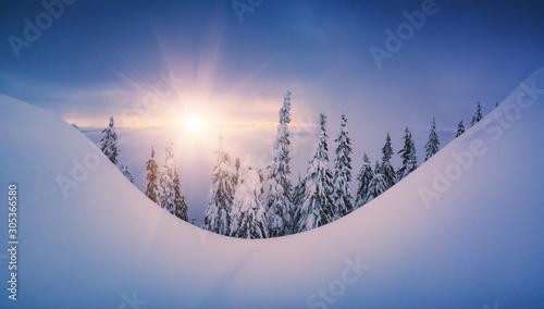 Obraz Minimalistic picture of carpathian winter valley - fototapety do salonu