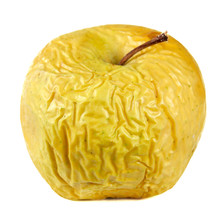 Yellow Wrinkled Apple Isolated On White Background, Shrivelled Apple Closeup, Old Skin Concept