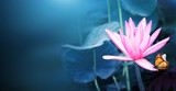 Horizontal banner with lotus flower and monarch butterfly