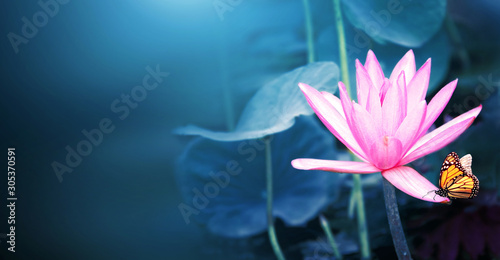 Fototapeta Horizontal banner with lotus flower and monarch butterfly obraz