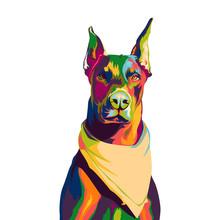 Doberman Dog In Colorful Pop Art Illustration
