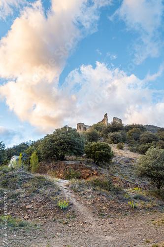 Medieval ruins in a garrigue landscape in South West France Fototapeta