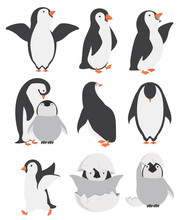 Happy Penguin And Chicks Characters In Different Poses Set
