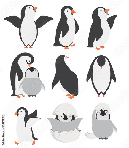 Stampa su Tela Happy penguin and chicks characters in different poses set