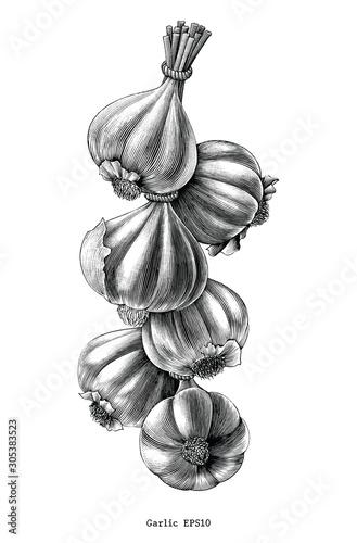 Valokuva Antique engraving illustration of garlic hand draw black and white clip art isol