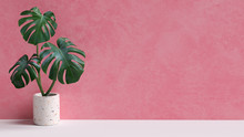 Tropical Leaves On Pink Backgr...
