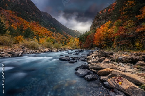 Obraz Breathtaking shot of a river in the forest with colorful trees under the cloudy sky in autumn - fototapety do salonu