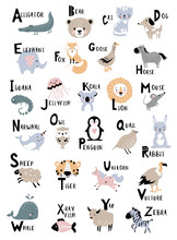 Animal Alphabet For Kids Education. Childish Vector Poster For Home Decor.