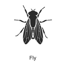 Insect Fly Vector Icon.Black V...