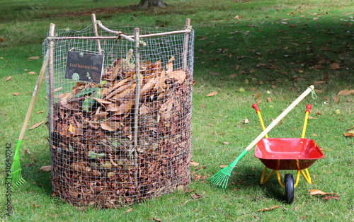 Obraz na plátne A wire cage for collecting fallen leaves to make leafmould or mulch for soil con