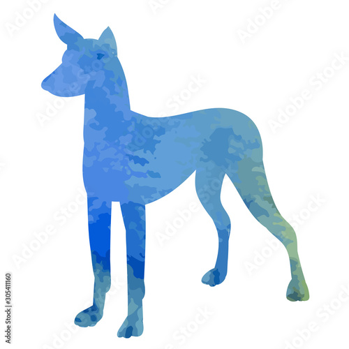 Fototapeta vector, on a white background, watercolor silhouette of a dog, blue obraz