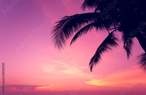 coconut tree at tropical coast, made with Vintage tones, and purple sky at the sunset ,warm tones