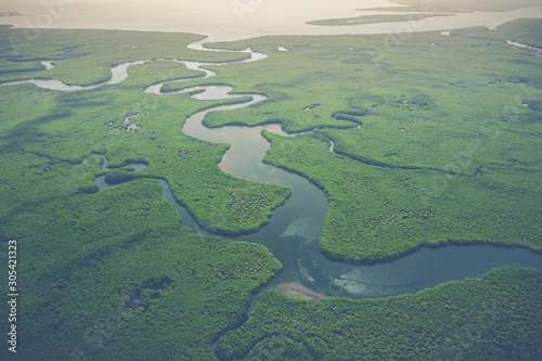 Foto auf Leinwand Olivgrun Aerial view of mangrove forest in Gambia. Photo made by drone from above. Africa Natural Landscape.