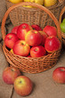 basket with red apples stands on burlap on the background of other baskets