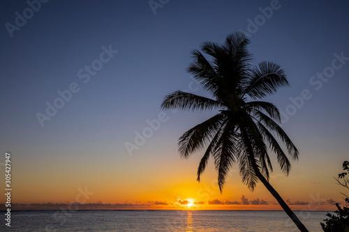 Fototapeta Punta Cana obraz na płótnie