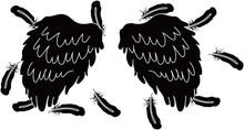 BLACK Angel Wings Of Feathers ...