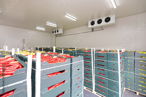 Fototapeta Red Peppers Cold Storage obraz
