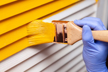 Closeup Female Hand In Purple Rubber Glove With Paintbrush Painting Natural Wooden Door With Yellow Paint. Concept Creative Design House Interior. How To Paint Wooden Surface. Selected Focus