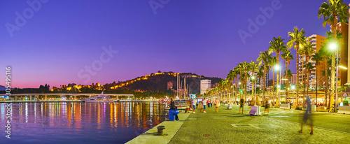 Panorama of Muele Uno pier, Malaga, Spain