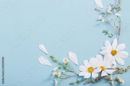 Fototapeta white flowers on paper background obraz