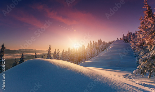 Foto auf AluDibond Blaue Nacht Wonderful picturesque Scene. Awesome Winter landscape with colorful sky. Incredible view of Snow-cowered trees, glowing sunlit, during sunset. Amazing wintry background. Fantastic Christmas Scene.