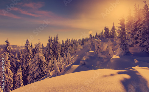 Foto auf Leinwand Aubergine lila Fantastic winter landscape during sunset. colorful sky glowing by sunlight. Dramatic wintry scene. snow covered trees under warm sunlit. Sunlight sparkling in the snow. Splendid Alpine winter