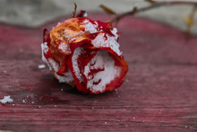 Faded Rose On The Background O...
