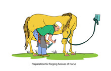 Cartoon Style Girl With Horse.