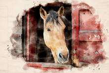 Watercolor Painting Of A Brown Horse Standing In The Barn With Head Looking Out The Ledge Stable Door - Illustration