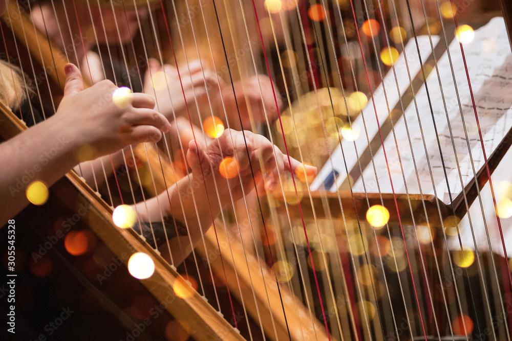 Fototapeta Harp player during a classical concert music