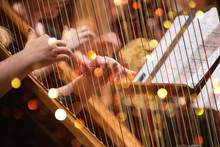 Harp Player During A Classical...