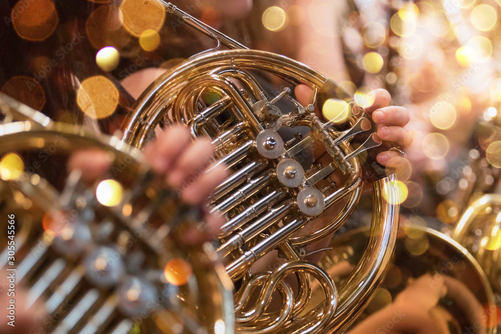 Fototapeta french horn during a classical concert music
